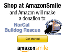 shop with Amazon Smile link